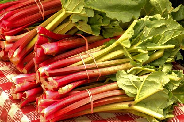 vegetales tóxicos que comemos a diario