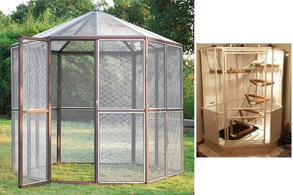 Cómo construir una jaula para reptiles